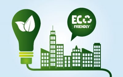 The Truth About Eco-Friendly Products: Benefits for Business