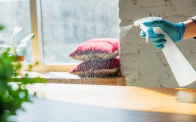 Maintaining Eco-Friendly Cleaning Practices in 2021